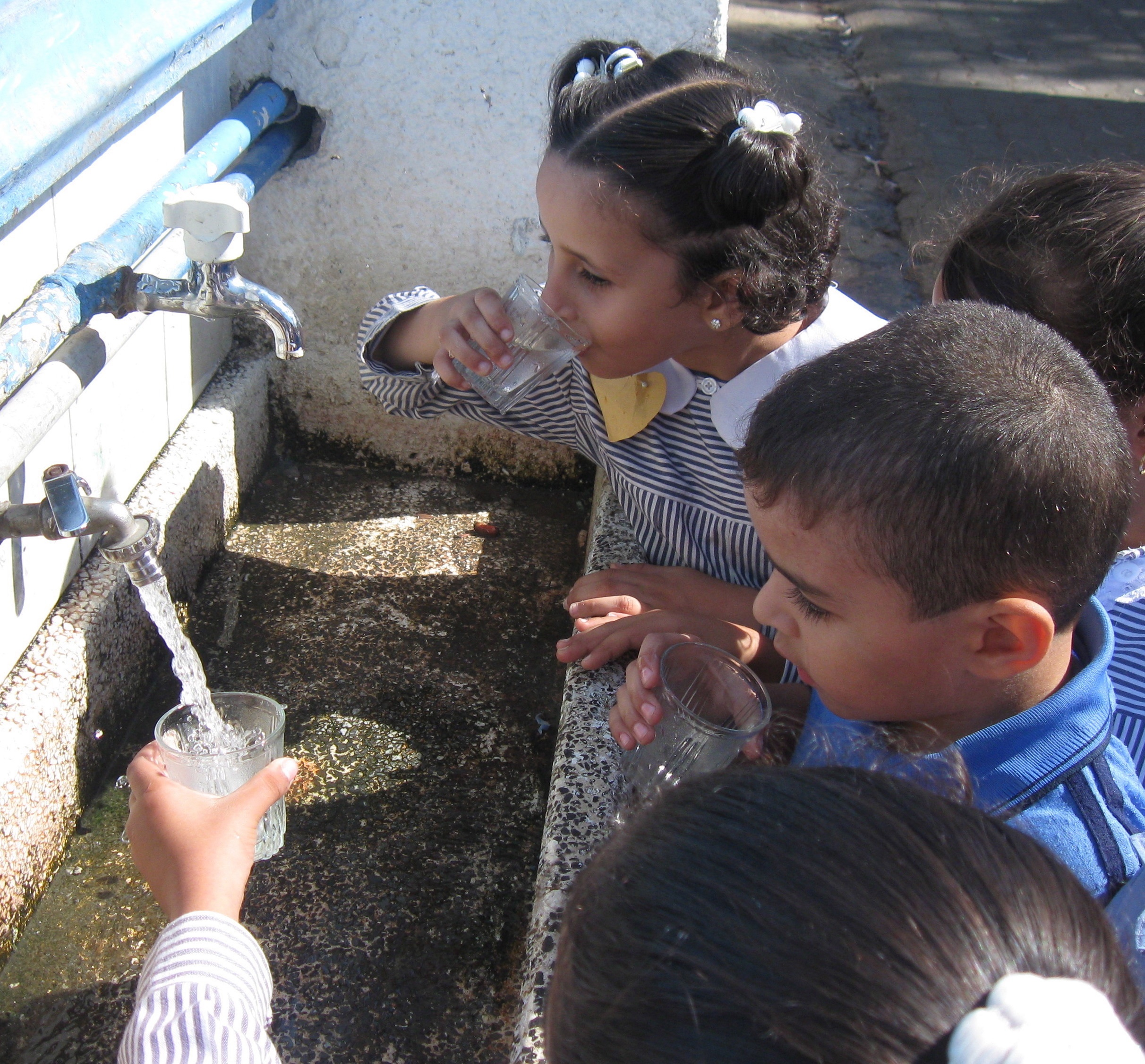Bringing Clean Water to the Children of Palestine